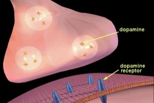 Dopamine et son récepteur