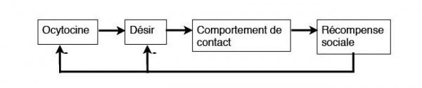 ocytocine 2 - dep affective